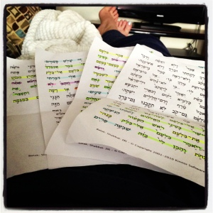 these color-coded torah portion sheets have been my constant companions; photo by salem pearce via instagram