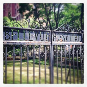 bellevue hospital gate; photo by salem pearce
